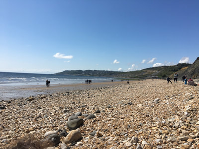 Charmouth beach Devon